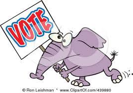 elephant voting