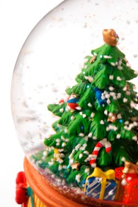 Close up of a small Christmas tree inside a spherical glass